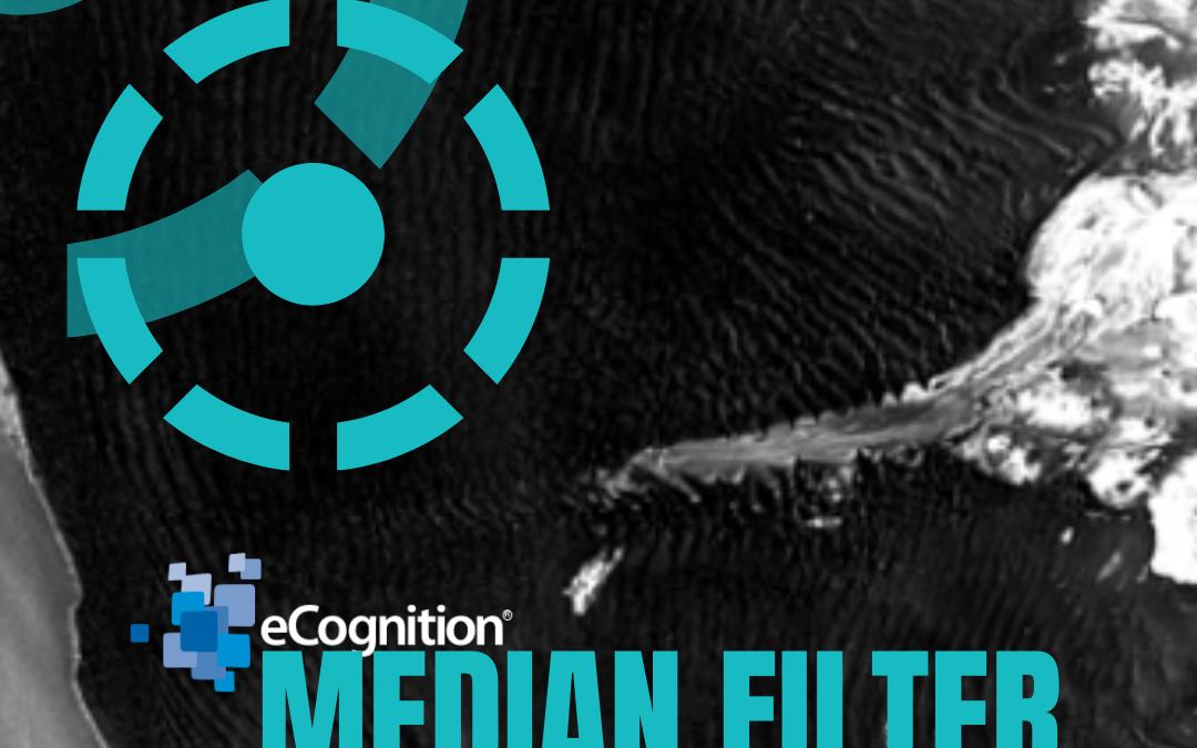 eCognition: Median Filter